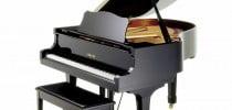 Akustik Kuyruklu  Piyano