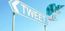 Yasakların cazibesine örnek; Twitter
